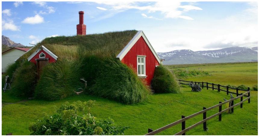 Se zelenými střechami se setkáváme čím dál častěji
