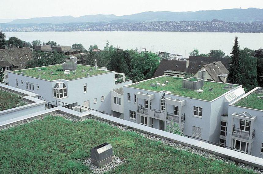 Několik zelených plochých střech
