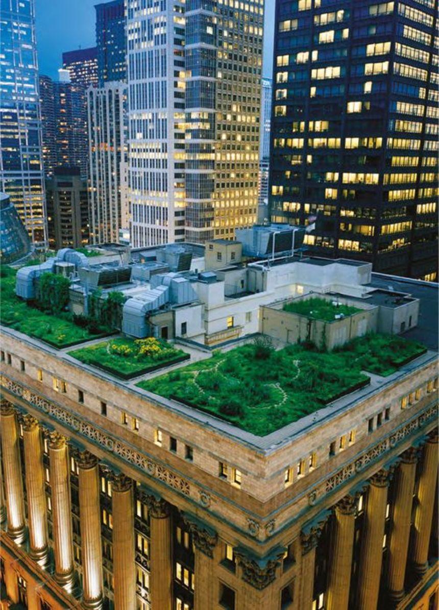 Zelená střecha uprostřed velkoměsta