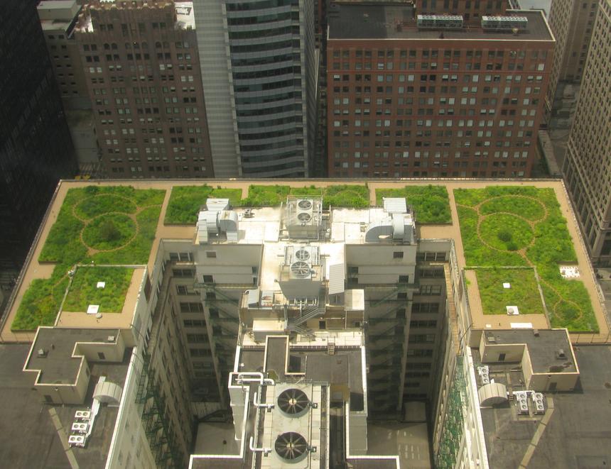 Zelená střecha pohlcuje hluk okolního města a snižuje prašnost