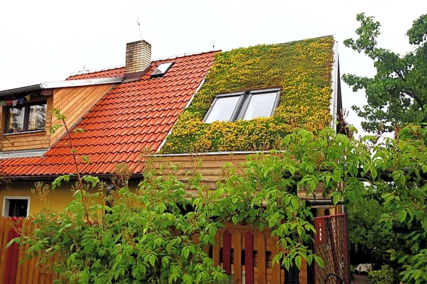 Šikmá zelená střecha s využitím nasákavé minerální vlny
