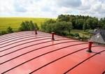 Odborník radí: Konec oprýskané barvě na střeše