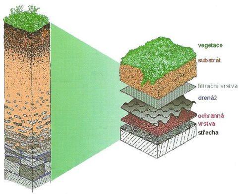 Požadavky na skladbu souvrství vegetačních ploch