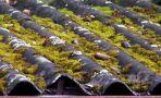 Likvidace azbestu ze střechy - Povinnosti zaměstnavatelů