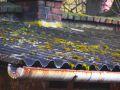 Likvidace azbestu ze střechy 2. část - Ochrana zdraví, skládkování azbestu