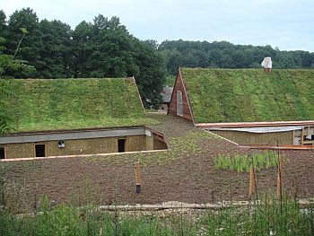 Zatravněné šikmé střechy (45°) v kombinaci se zelení na plochých střechách