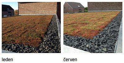 Zelená střecha Urbanscape během ročních období, zdroj: Knauf Insulation