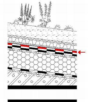 Příklad použití souvrství asfaltových pásů ve vegetační skladbě, vrchní vrstva, zdroj: SVAP