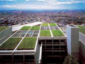 Ilustrační foto, zelené střechy, zdroj: internet