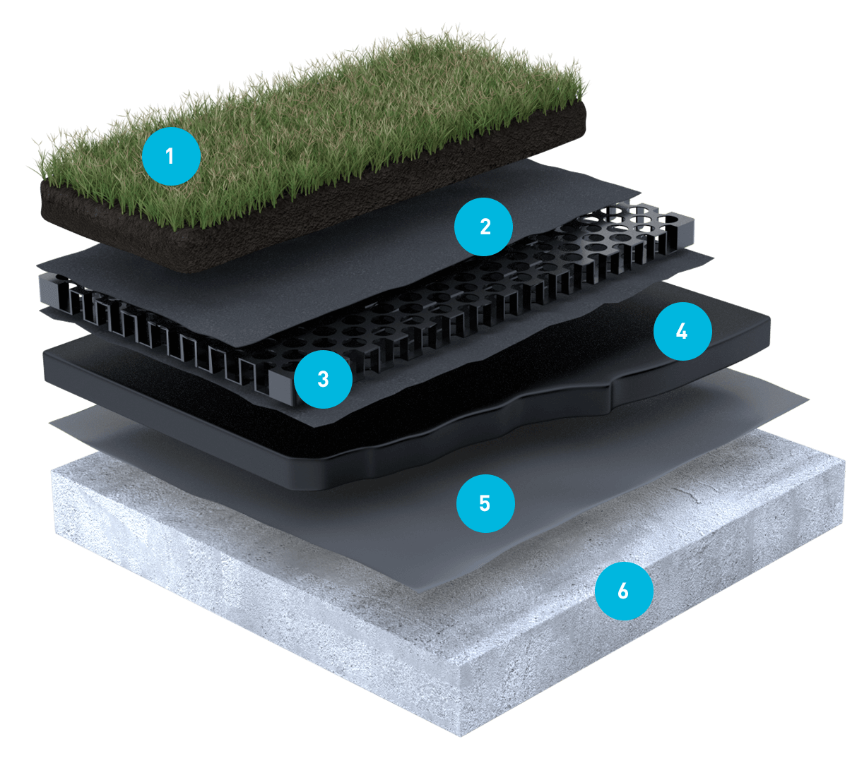 Sklatba zelené střechy
