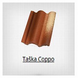 Terran Coppo