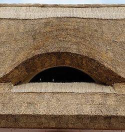Doškové střechy Rákosové